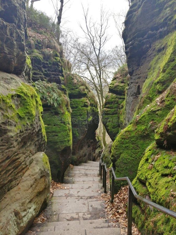 Vert et roches image libre de droits