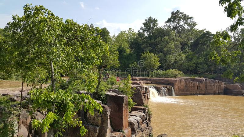 Download Vert forêt image stock. Image du brun, vert, pierre, ciel - 56482029