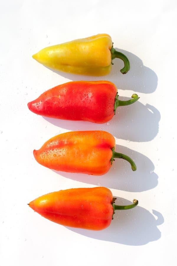 Vert rouge entier de paprikas jaune-orange dans des baisses de l'eau sur la fin d'isolement par fond blanc de vue supérieure  photos libres de droits