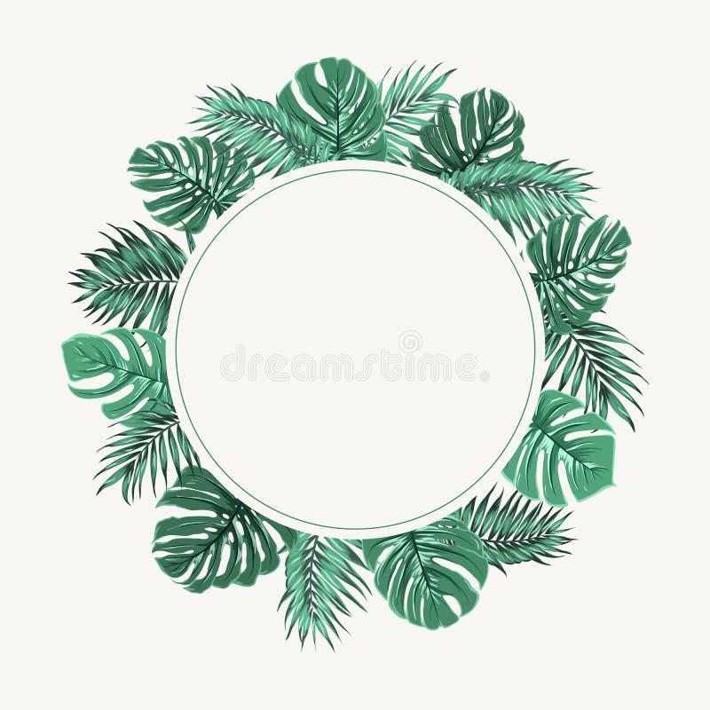 Vert tropical exotique de cadre de frontière de guirlande de feuilles illustration stock