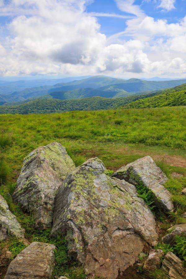 Verticaal Rond Kaal Roan Mountain NC TN stock foto