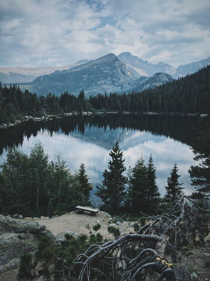 Verticaal schot van een grote die vijver door bomen met een mooie berg op de achtergrond wordt omringd stock afbeelding