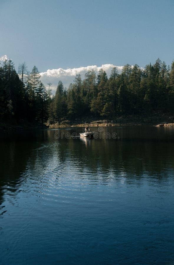 Verticaal schot van een persoon in een motorboot die die in een meer in een bos varen door groen wordt omringd royalty-vrije stock afbeelding