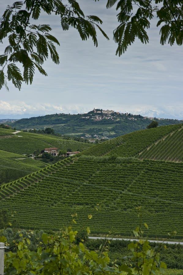 Verticaal: Stad & wijngaarden in Piemonte, Italië royalty-vrije stock afbeeldingen