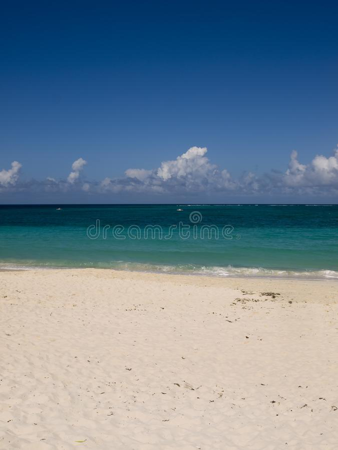Vertical beach cover shot with space at the top and bottom. Vertical, shot of an empty Caribbean beach with deep blue sky, turquoise sea and golden sand royalty free stock image