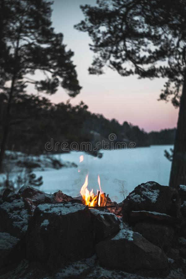 Vertical beautiful shot of a small bonfire in a forest with a beautiful view blurred in background. A vertical beautiful shot of a small bonfire in a forest with royalty free stock photography