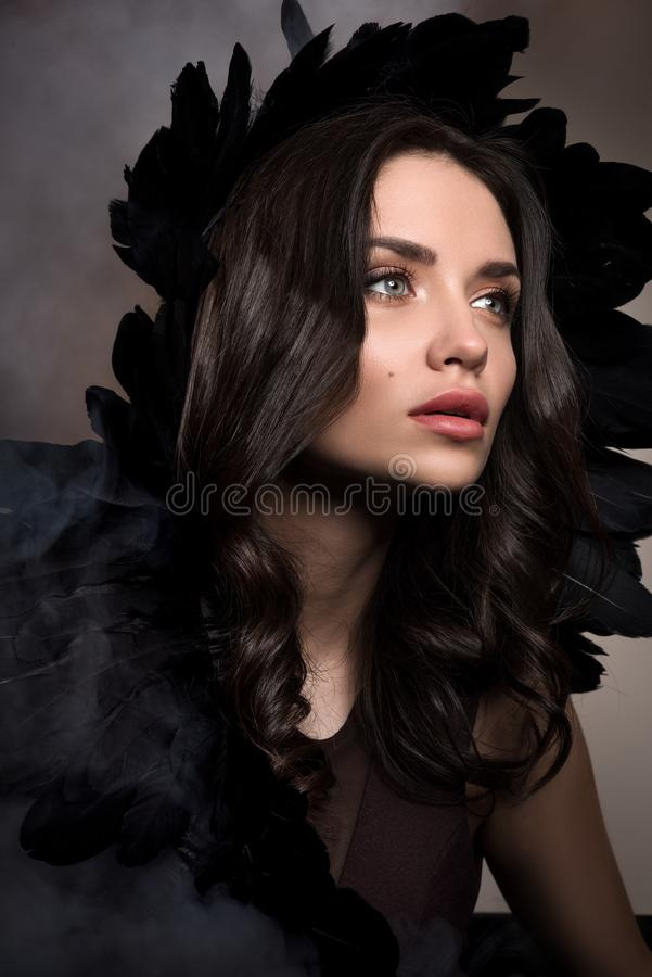 Vertical beauty portrait in dark tones. Beautiful young woman in a cloud of smoke with black feathers in her hair. Professional makeup and hairstyle stock photos
