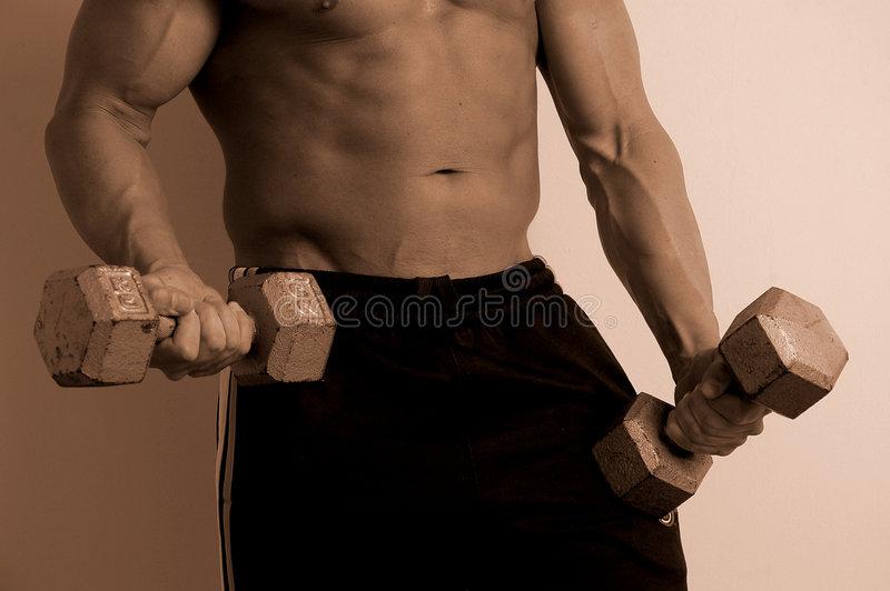 Vertical body with weights royalty free stock photos