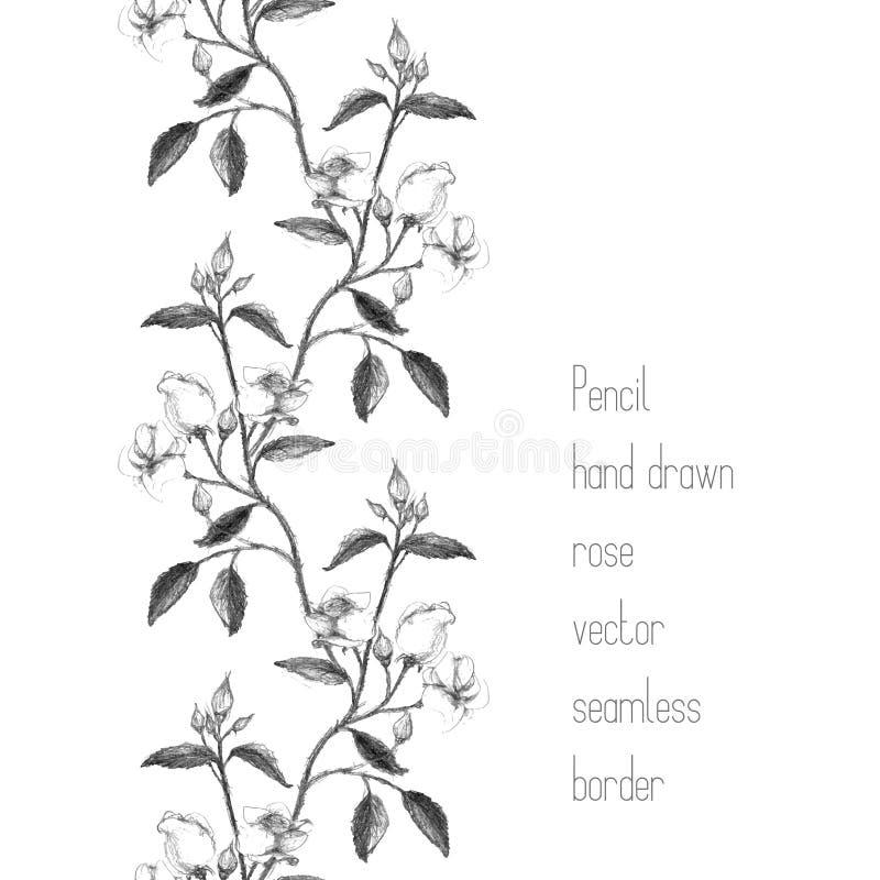 Vertical border made of pencil sketched rose. Branch stock illustration