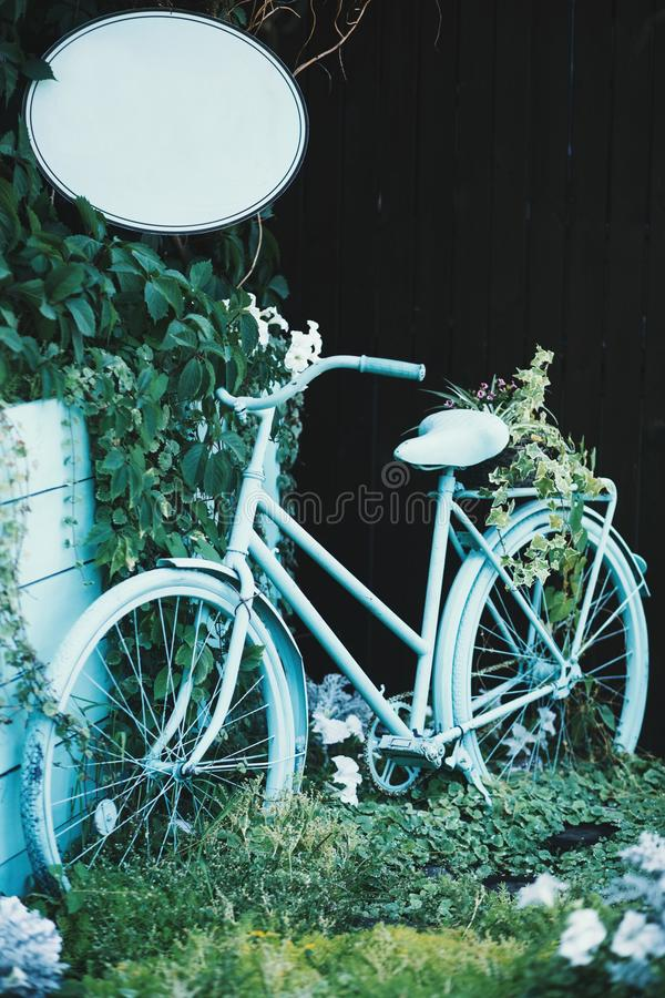 Vertical closeup shot of a light blue bicycle near green plants. A vertical closeup shot of a light blue bicycle near green plants royalty free stock images