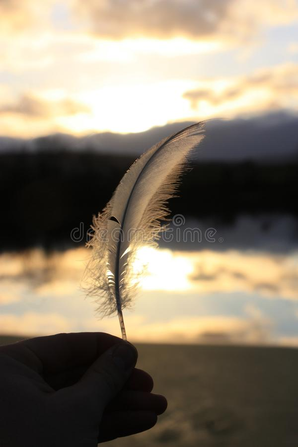 Vertical closeup shot of a person holding a white feather on the background of a lake during sunset. A selective vertical closeup shot of a person holding a royalty free stock photos