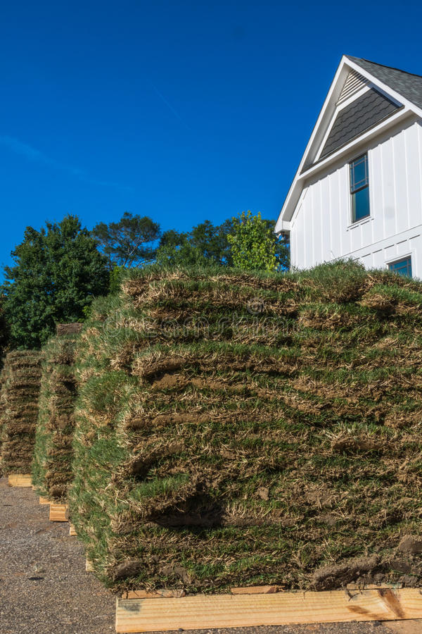 Vertical Closeup of Sod with House. Vertical closeup photo of green and brown sod on wooden pallets with partial white house and trees in the background stock photo