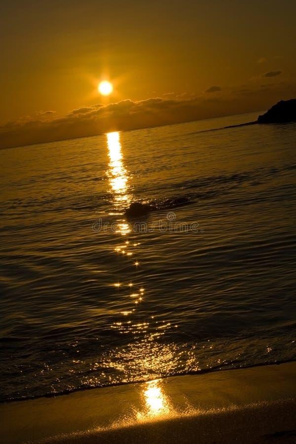 Vertical de gran alcance de la puesta del sol fotos de archivo libres de regalías