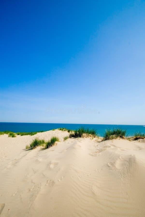 Vertical de la playa de la duna imagen de archivo imagen for Arena de playa precio