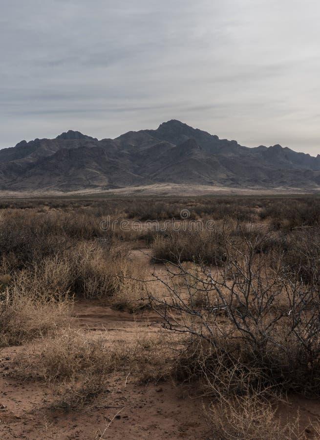 Vertical de las montañas de la Florida en el sudoeste New México imágenes de archivo libres de regalías