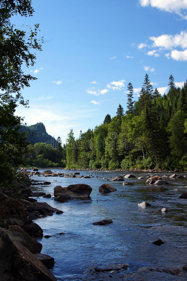 Vertical de Salmon River imagens de stock