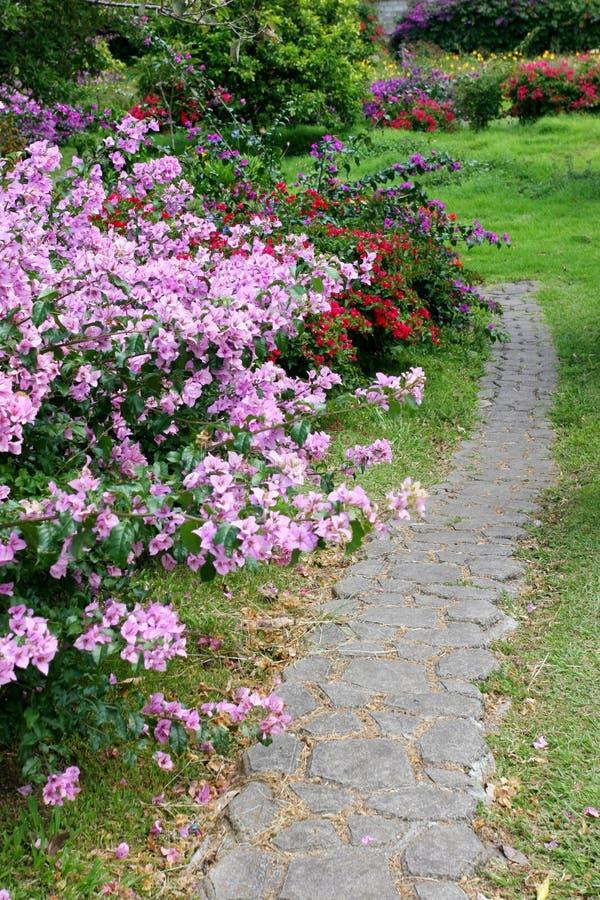 Vertical del camino del jardín foto de archivo