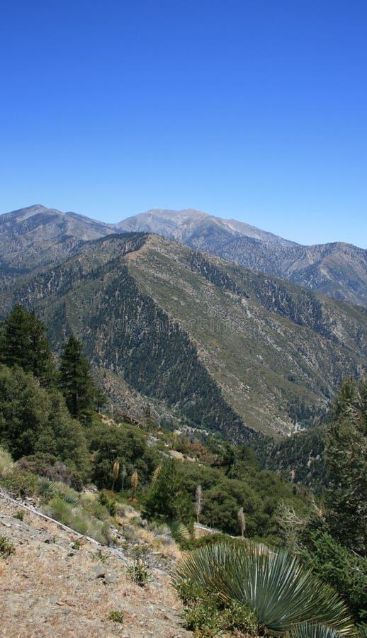 Vertical do Mt. Baldy imagem de stock