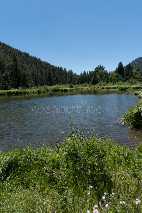 Vertical of Fawn Lakes in northern New Mexico. This is one of several fishing ponds which make up Fawn Lakes in the Carson National Forest in northern New stock photography