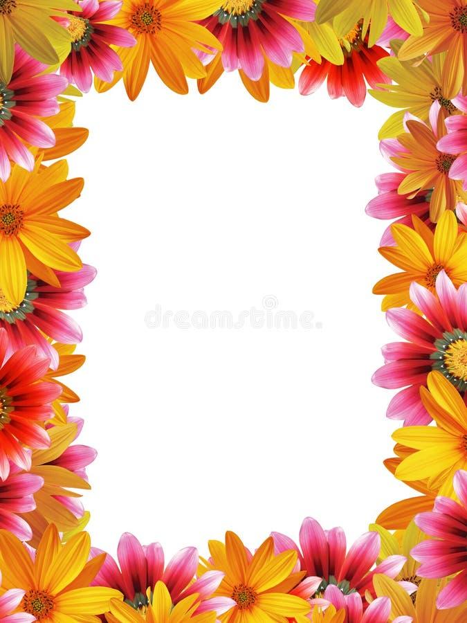 Vertical flower frame stock image