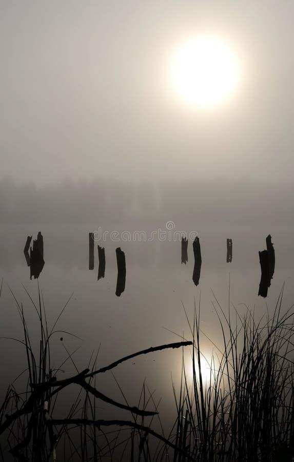 Vertical Foggy Lake Landscape Stock Photo