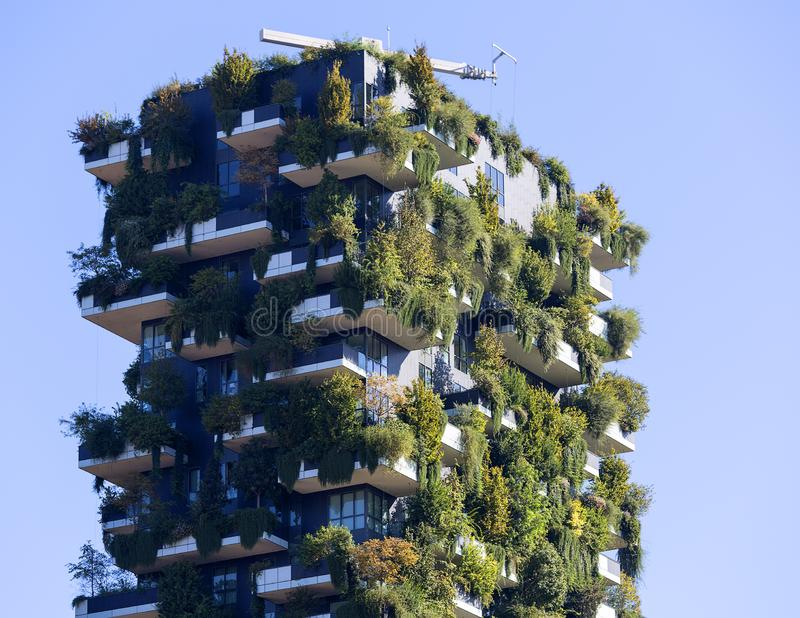 Vertical Forest Bosco Verticale, residential tower  with trees on the balconies, Milan, Italy royalty free stock photos