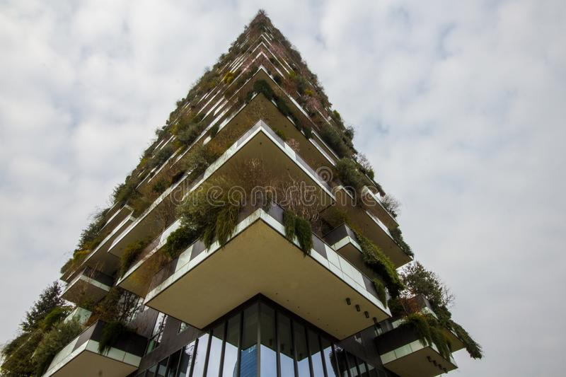 Vertical forest palace in Milan. royalty free stock photo