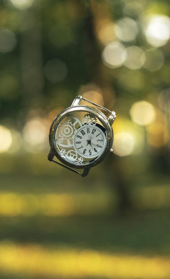 Vertical format inspiring graphic design picture of vintage hand clock in air on golden fairy tale forest unfocused natural. Background environment royalty free stock photos