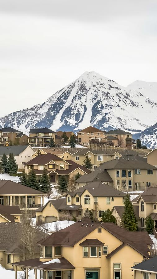 Vertical frame Exterior view of homes surrounded by fresh white snow and conifers in winter. A towering frosted mountain and cloudy sky can be seen in the royalty free stock photos