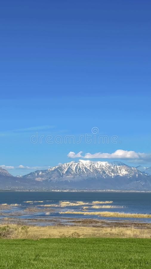 Vertical frame Grassy terrain with view of lake and snowy mountain under blue sky on sunny day. Brown grasses grow on the shallow parts of the water stock photo