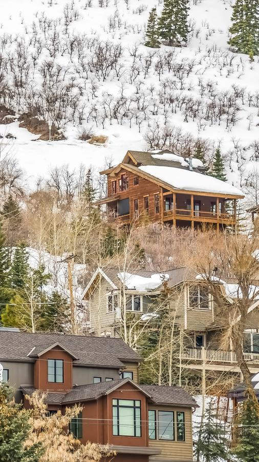 Vertical frame Multi storey residences built on a mountain blanketed with fresh snow in winter. Lush coniferous trees can also be seen around the houses stock photos