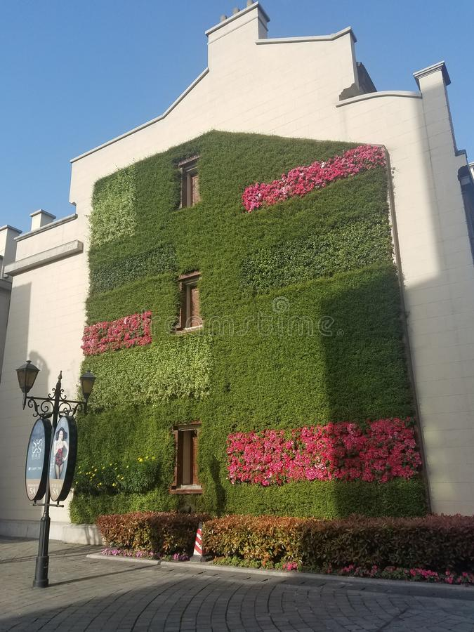 Vertical garden on the Exterior wall of a building stock image
