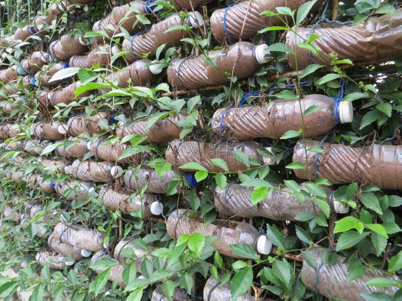 Vertical garden in Jakarta royalty free stock image