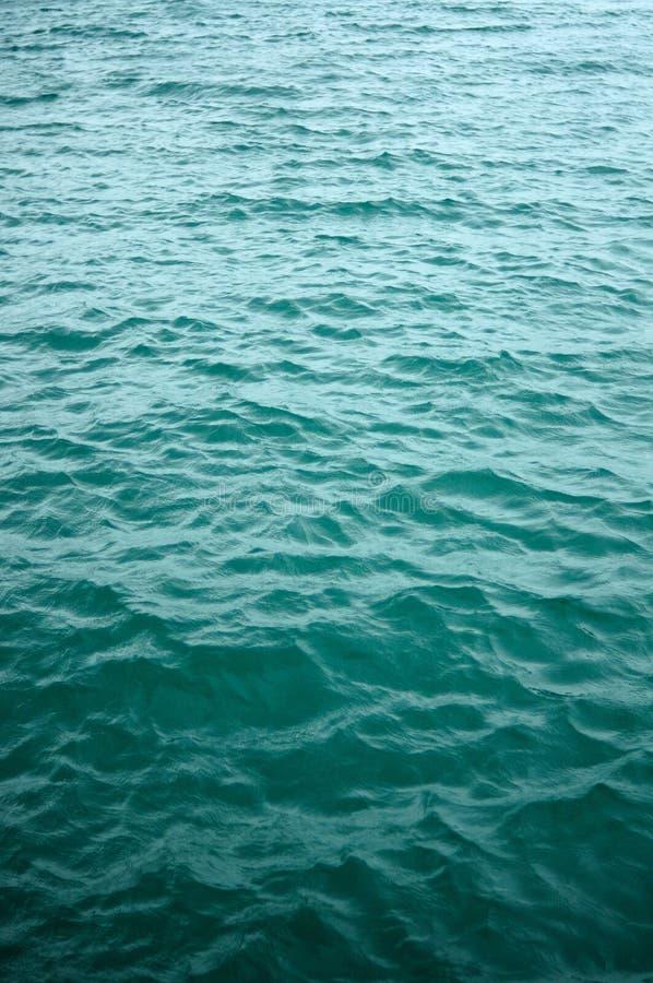 Vertical gentle ocean water waves, background stock photography