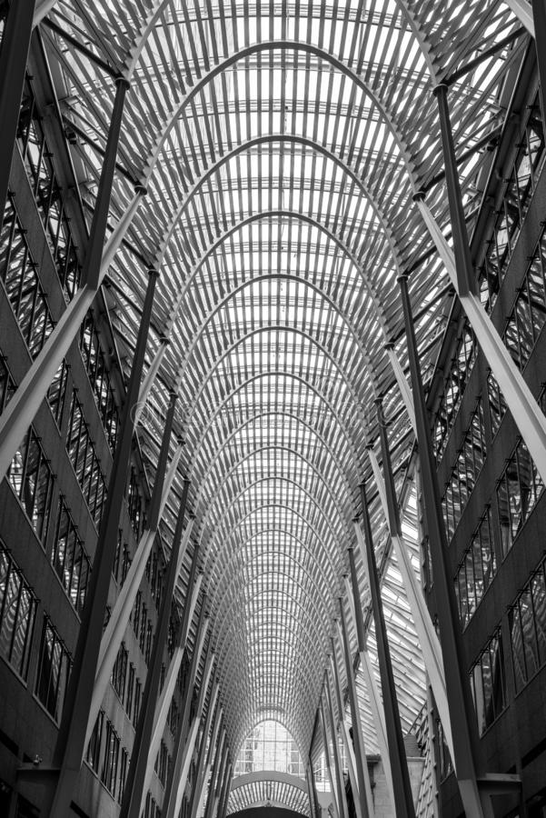 Vertical grayscale low angle shot of the inside of the famous Brookfield Place in Toronto, Canada. A vertical grayscale low angle shot of the inside of the royalty free stock image