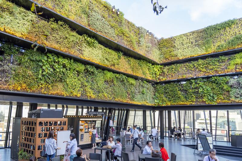 Vertical Green Wall And Cafe. TOKYO, JAPAN - OCTOBER 6, 2018. Vertical Green Wall And Open Air Terrace. Cafe And Restaurant Is On The Rooftop Full Of People royalty free stock photography