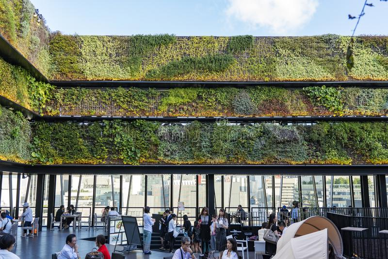 Vertical Green Wall And Cafe. TOKYO, JAPAN - OCTOBER 6, 2018. Vertical Green Wall And Open Air Terrace. Cafe And Restaurant Is On The Rooftop Full Of People royalty free stock images