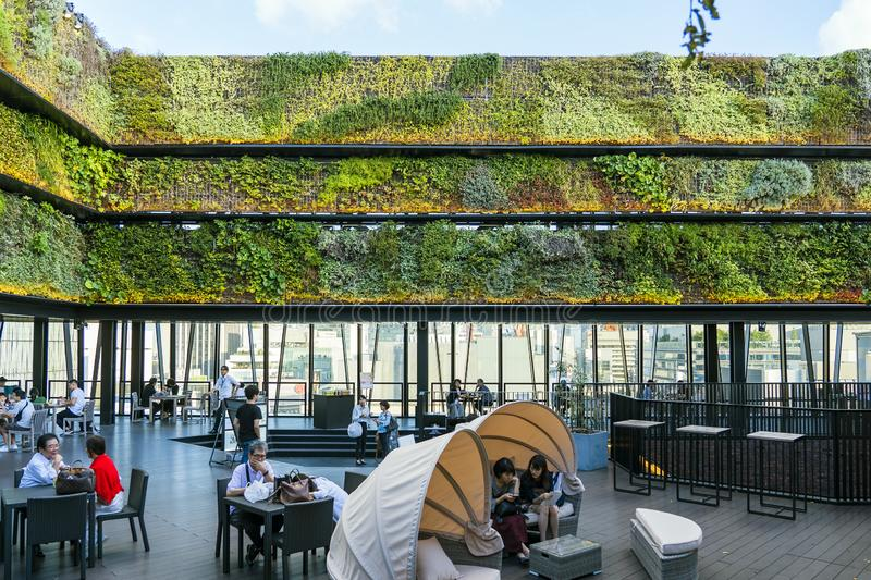 Vertical Green Wall And Cafe. TOKYO, JAPAN - OCTOBER 6, 2018. Vertical Green Wall And Open Air Terrace. Cafe And Restaurant Is On The Rooftop Full Of People stock image