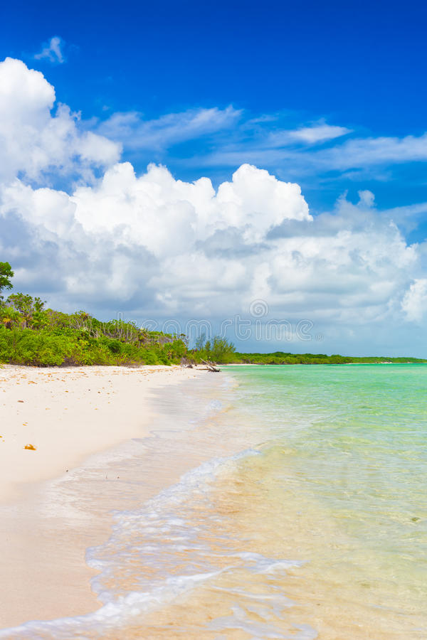 Vertical image of a deserted tropical beach at Coco Key in Cuba. Vertical image of a deserted tropical beach at Coco Key (Cayo Coco) in Cuba on a sunny summer stock images