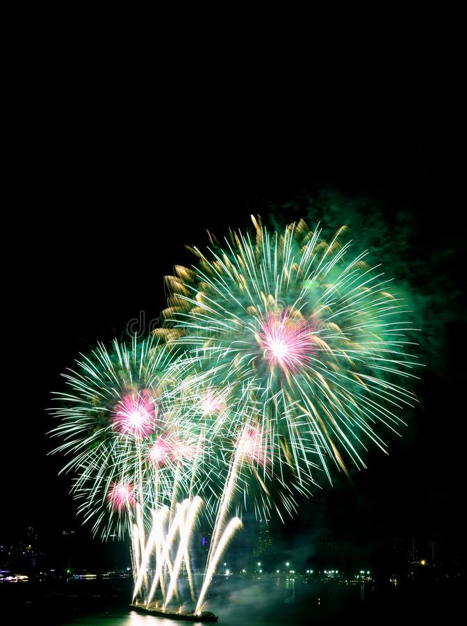 Vertical image of green and pink fireworks in the night sky royalty free stock image