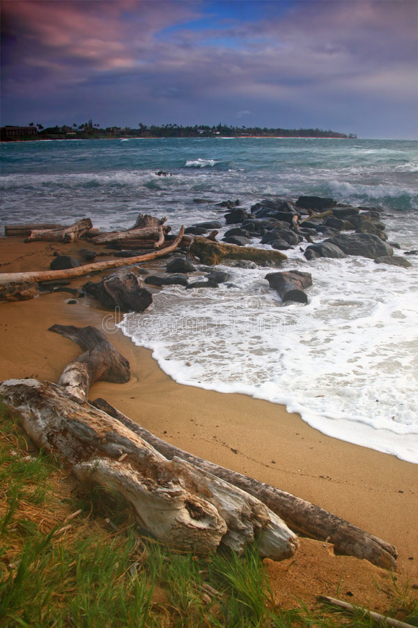 Download Vertical Landscape Of A Beach In Hawaii Stock Photo - Image: 6942966