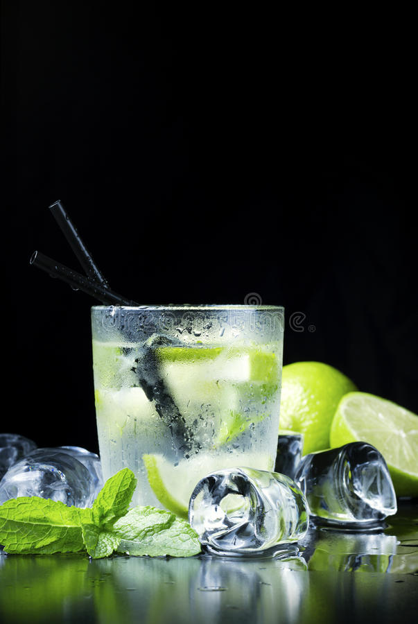 Vertical mojito royalty free stock images