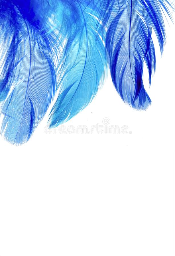 natural backdrop of a beautiful fairy with bright blue royalty free stock photos