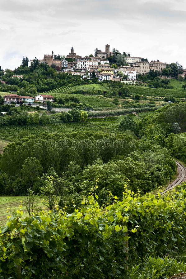 Free Vertical Of Vineyards & Town In Piedmont, Italy Stock Photos - 20136153