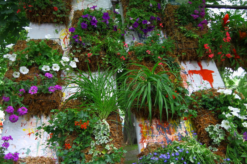 Vertical ogródu ściana zdjęcie royalty free