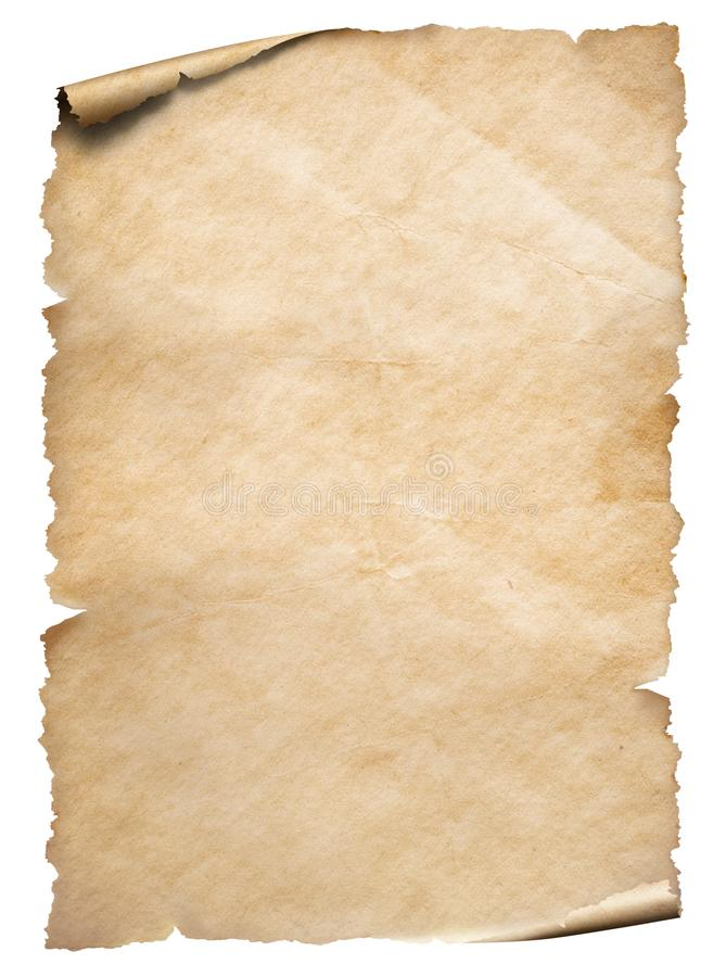 Vintage paper textured object isolated on white. Vertical old paper textured sheet isolated on white stock photos