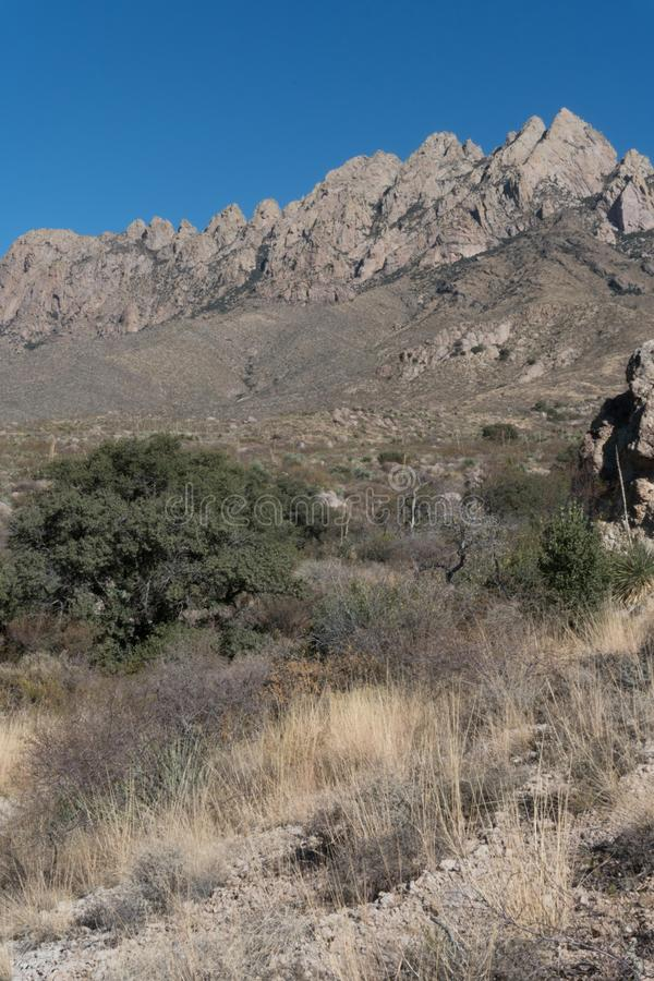 Vertical of the Organ Mountains at Dripping Springs area. stock image