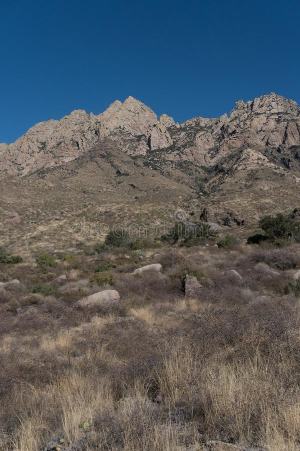 Vertical of the Organ Mountains. royalty free stock photos