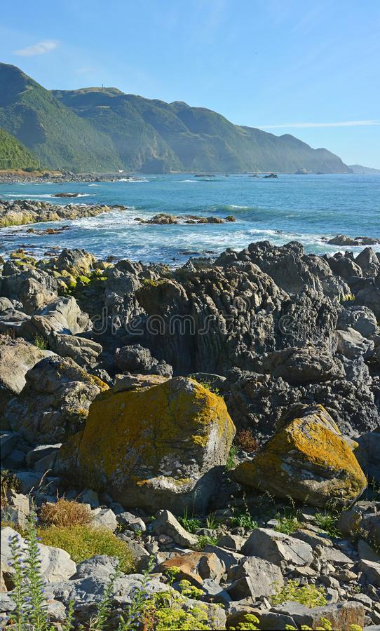 Kaikoura coastline looking north one year after the earthquake royalty free stock image