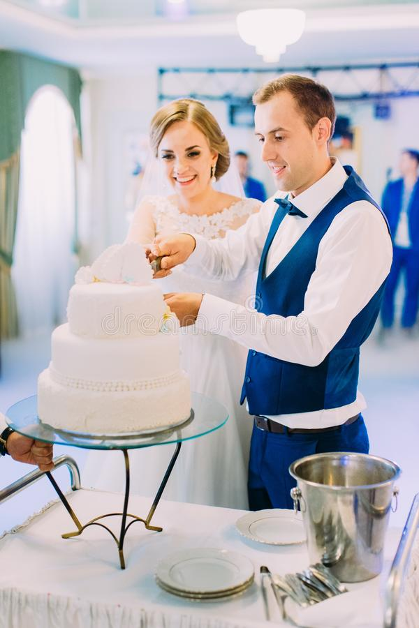 Vertical photo of the happy newlyweds cutting the first piece of the wedding cake. royalty free stock photography